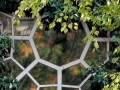 Fensterdetail - Haus Kühl - Westend