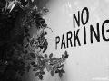 US-Headquarter Dahlem - No Parking