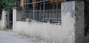 Große Teile der den Vorgarten umgebenden Mauer sind mittlerweile zerstört.